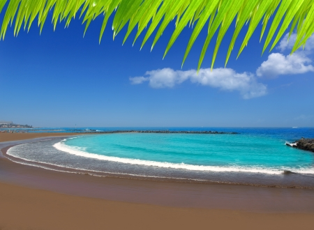 Adeje coast Las americas Beach in south Tenerife at Canary Islands photo