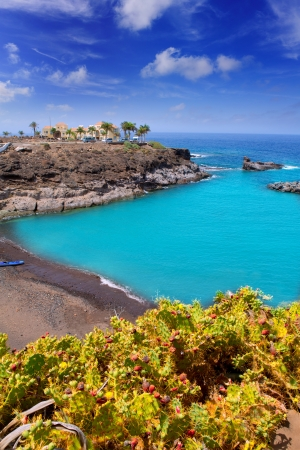 canarian: Beach Playa Paraiso costa Adeje in Tenerife at Canary Islands