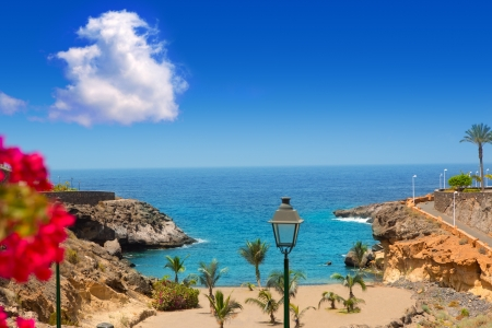 canary: Beach Playa Paraiso costa Adeje in Tenerife at Canary Islands