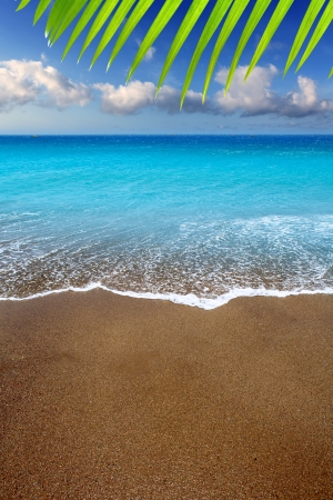 canarian: Canary Islands brown sand beach and tropical turquoise water Stock Photo