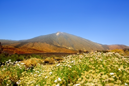 stratovolcano: Teide National Park mountain in Tenerife at canary Islands