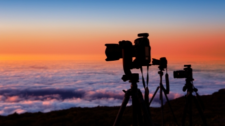 photographer: camera tripods of nature photographer work in high mountain sunset over sea of clouds
