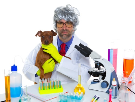 Crazy nerd scientist silly veterinary man with dog in chemical laboratory Stock Photo - 16651335