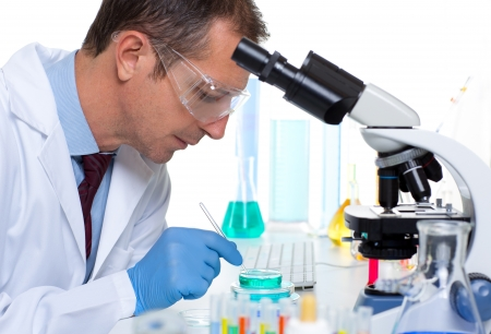 laboratory scientist working at lab with test tubes and microscope Stock Photo - 16649749