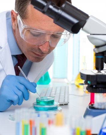 clinical research: laboratory scientist working at lab with test tubes and microscope Stock Photo