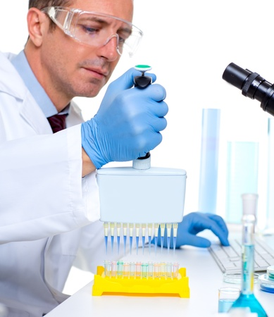 laboratory scientist working at lab with multi channel pipette Stock Photo - 16650807
