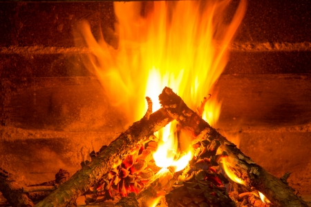 burning firewood in chimney with pine cones and fire photo