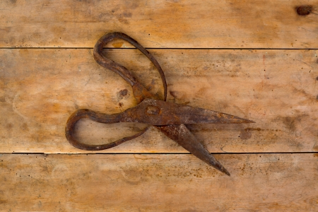 antique scissors: Antique sheep wool shears scissors vintage rusted on retro wood