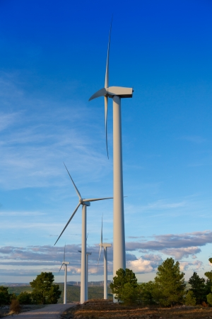 Aerogenerator windmills for green electric energy in pine mountain and blue sky photo