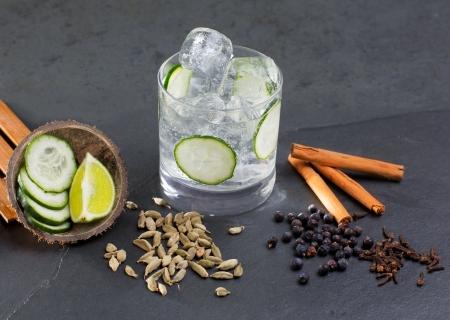 enebro: Gin tonic con lima c?l pepino vainilla canela y cardamomo, clavo de olor bayas de enebro Foto de archivo