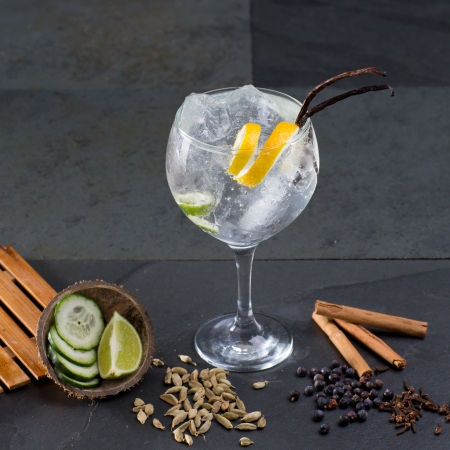 Gin tonic cocktail with lima cucumber vanilla cloves cardamom cinnamon and juniper berries photo