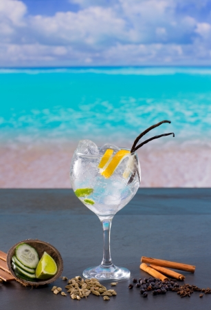 Gin tonic cocktail with spices in  tropical turquoise Caribbean beach