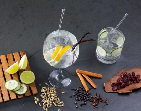 juniper: Gin tonic cocktail with lima cucumber vanilla cloves cardamom cinnamon and juniper berries