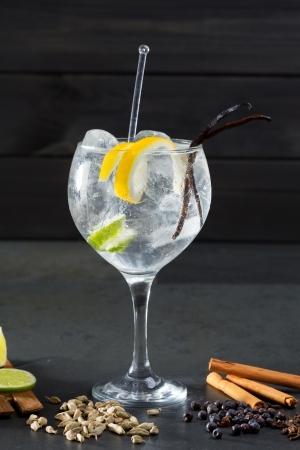 a juniper: Gin tonic con lima c�ctel pepino vainilla canela y cardamomo, clavo de olor bayas de enebro Foto de archivo