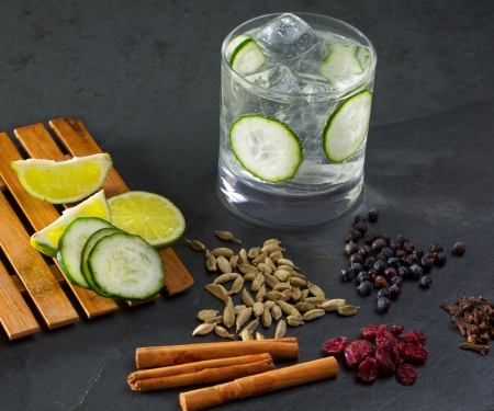 Gin tonic cocktail with lima cucumber cloves cardamom cinnamon and juniper berries photo