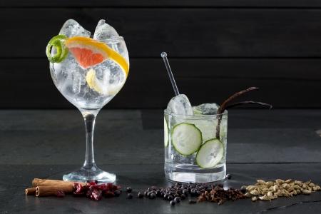 bebidas alcoh�licas: Gin tonic variados c?cteles con lima y pomelo pepino y especias Foto de archivo