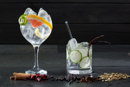 alcoholic drinks: Gin tonic varied cocktails with lima cucumber and grapefruit and spices