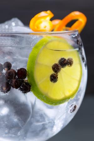 Gin tonic cocktail macro closeup with juniper berries orange and lime slice Stockfoto
