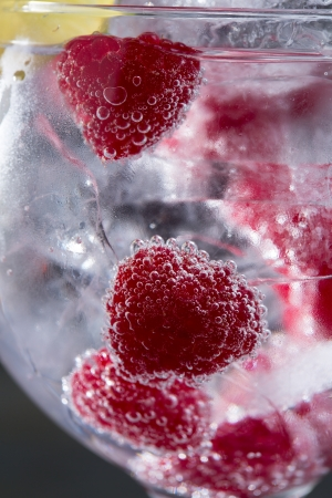 Gin tonic cocktail with raspberry and ice macro bubbles closeup on black photo