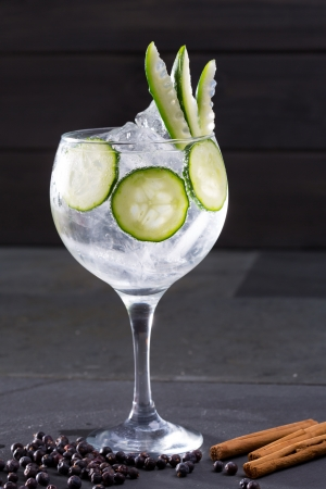 Gin tonic cocktail with cucumber and cinnamon and juniper berries on black