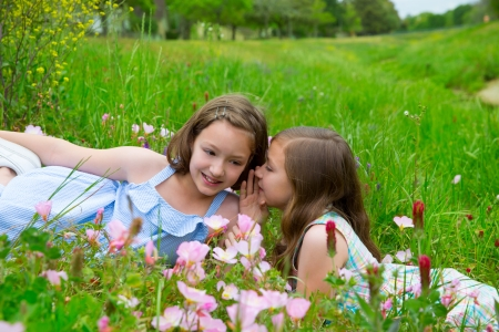 dido: twin sisters friends whispering ear on spring poppy flowers green meadow