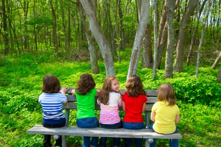 green back: Children sister and friend girls sitting on park bench looking at forest and smiling