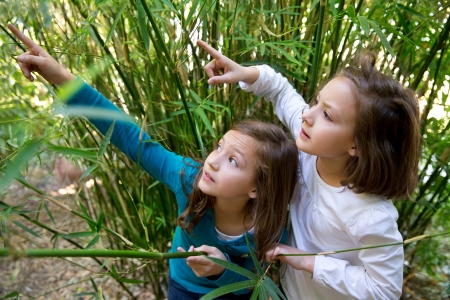sister twin girls playing in nature pointing finger from green canes photo