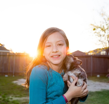 Children kid girl playing with puppy dog hairy chihuahua in backyard sunset photo