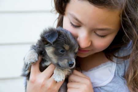 lovely girl: girl hug a little puppy dog gray hairy chihuahua doggy