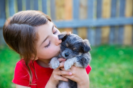 children girl kissing her puppy chihuahua doggy on the wood fence photo