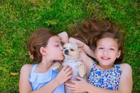 双子の姉妹は裏庭の芝生の上に横たわっているチワワ犬と遊ぶ
