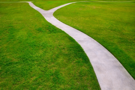 the view option: Garden lawn grass with a two option ways detour metaphor of which way to choose Stock Photo