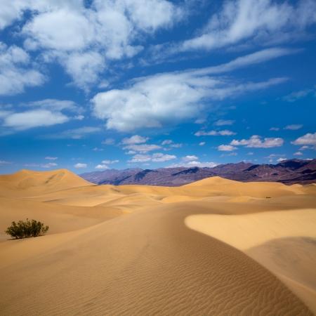 nevada: Mesquite Dunes desert in Death Valley National Park California