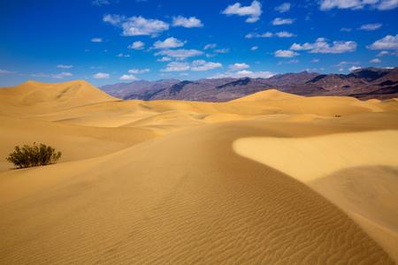 mojave: Mesquite Dunes desert in Death Valley National Park California