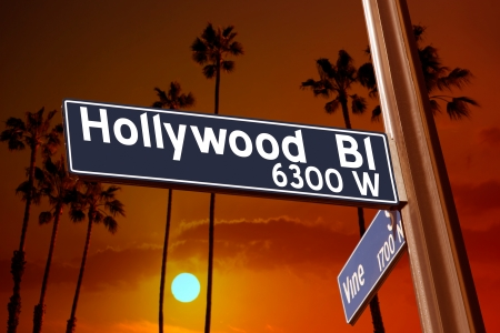 hollywood   california: Hollywood Boulevard with Vine sign illustration on palm trees background