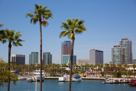 マリーナ港米国からヤシの木がカリフォルニア州ロングビーチ スカイライン 写真素材