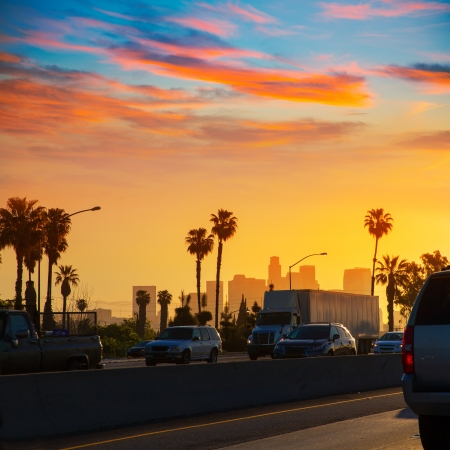 sunset palm trees: LA Los Angeles sunset skyline with traffic California from freeway