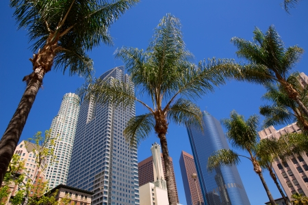 LA Downtown Los Angeles Pershing Square en palmbomen en wolkenkrabbers Stockfoto