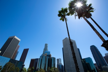 rise and shine: Downtown LA Los Angeles skyline California from 110 freeway with palm trees