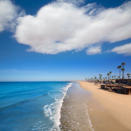 Newport beach in California with palm trees along the shore Imagens