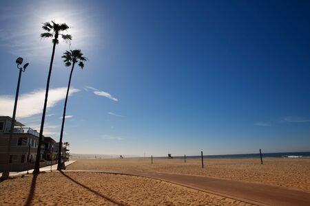 california coast: California Newport Beach with high palm trees on sand shore