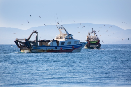 Trawler boats with seagulls in Ibiza Formentera islands photo