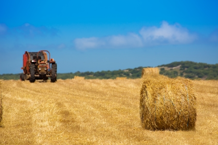 Menorca combine tractor wheat with round bales in golden field photo