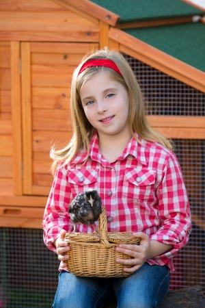 rancher: breeder hens kid girl rancher blond farmer playing with chicks in chicken hencoop Stock Photo
