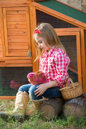 rancher: breeder hens kid girl rancher blond farmer playing with chicks in chicken tractor coop