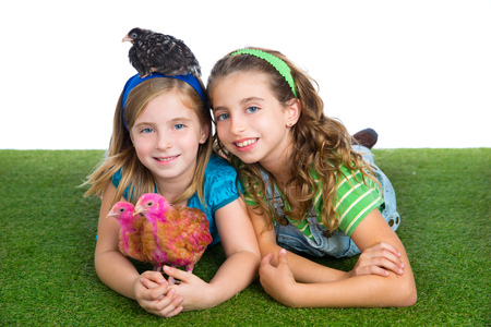 breeder hens kid sister farmer girls playing funny with chicken chicks on white background photo