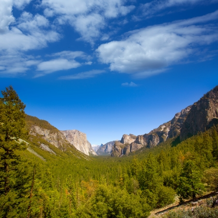granite park: Yosemite el Capitan and Half Dome in California National Parks US