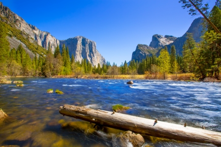 sequoia: Yosemite Merced River el Capitan and Half Dome in California National Parks US Stock Photo