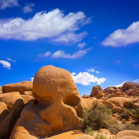 Skull rock in Joshua tree National Park Mohave desert Yucca Valley California USA photo