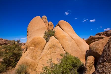 mohave: Skull rock in Joshua tree National Park Mohave desert Yucca Valley California USA Stock Photo